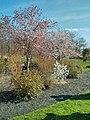 Biotech Park Area, Worcester, MA, USA - panoramio (1).jpg