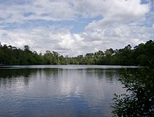 Blackpark Lake.JPG