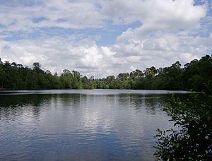 Black Park - Image: Blackpark Lake