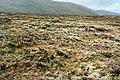 Blaen y Ddalfa - geograph.org.uk - 1559011.jpg