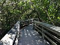 Boardwalk in De Soto National Memorial.JPG
