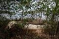 Boat Wreck - panoramio.jpg