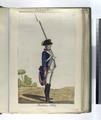 Borbon, 1796 (1797) (NYPL b14896507-87702).tiff