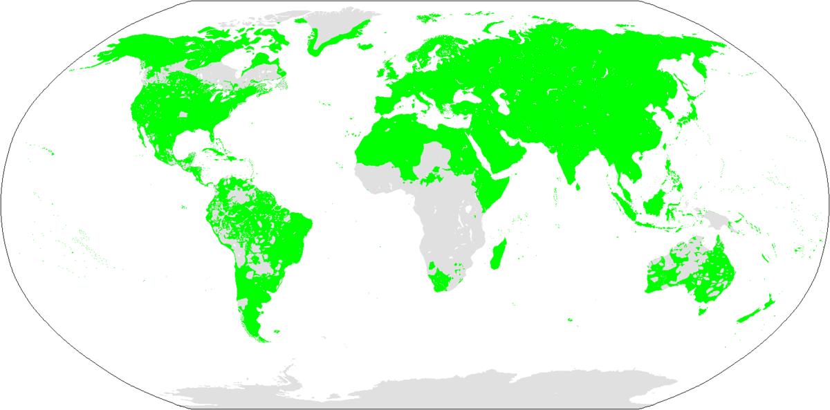 Picture of: Borean Languages Wikipedia