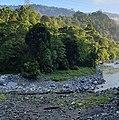 Borneo View.jpg