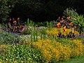 Botanical garden in Bamberg-20200728-RM-161949.jpg