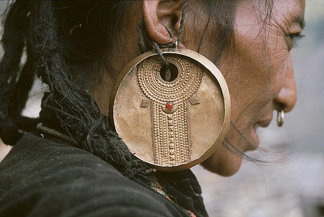 File boucle d 39 oreilles wikimedia commons - Porte boucle d oreille arbre ...