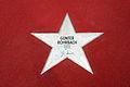 Boulevard der Stars - Günter Rohrbach.JPG