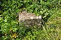 Boundary stone at Lannacombe (3118).jpg