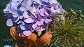 Bouquet Upclose (153221309).jpeg