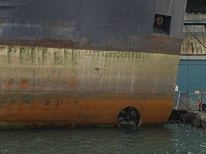 Bow thruster of the lake freighter Tim S. Dool, moored at the Redpath Sugar Refinery -c.jpg