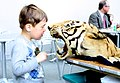 Boy and Tiger Head (5654677491).jpg