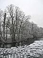 Brühl 2020 - Weißweiher in Weiß.jpg
