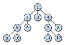 http://upload.wikimedia.org/wikipedia/commons/thumb/b/bc/Breadth-first-tree.png/220px-Breadth-first-tree.png