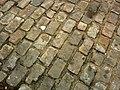 Brick road at the Forks (273432164).jpg