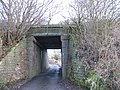 Bridge under disused railway, Diglake - geograph.org.uk - 645895.jpg