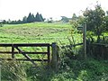 Bridle path - geograph.org.uk - 986536.jpg