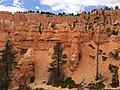 Bryce Canyon from scenic viewpoints (14493627698).jpg