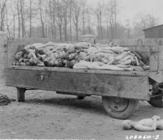 Corpi rinvenuti a Buchenwald