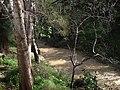 CHADWICK LAKES - panoramio (4).jpg