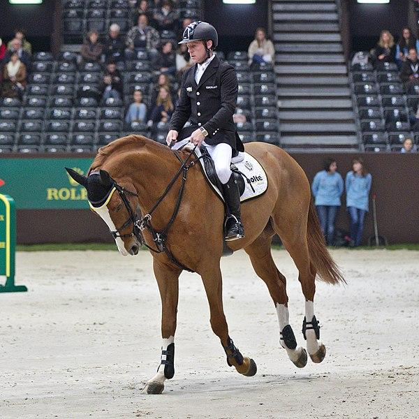 Malgré un bon équilibre sur les sauts, on note que le reste du temps les chevaux présentent un équilibre assez plongeant.