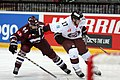 CHL, HC Sparta Praha vs. Genève-Servette HC, 5th September 2015 26.JPG