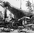 COLLECTIE TROPENMUSEUM Voor het huis van de overledene in kampong Sadang (Celebes) liggen geofferde karbouwen in verband met het dodenfeest TMnr 10003209.jpg