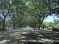 CORAL WAY at CORAL GABLES - panoramio.jpg