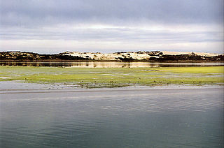 Suburb of Coorong, Kingston, (north to south), South Australia