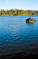 CSIRO ScienceImage 4050 Late afternoon along the Burdekin River near Charters Towers QLD.jpg