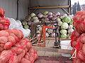 Cabbage Kosovo.JPG