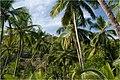 Cabo da Rama road - panoramio.jpg