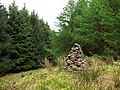 Cairn in the forest - geograph.org.uk - 805598.jpg