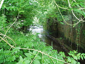 Caistor Canal - Water flowing over the weir and through the derelict chamber of Moor lock. The stonework is still in remarkably good condition.
