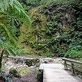 Caldeira Velha, São Miguel Island, Azores - panoramio (5).jpg