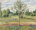 Camille Pissarro - Le pré avec cheval gris, Eragny (1893).jpg