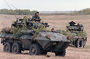 two wheeled armoured vehicles, with some tree branches used as camouflage on rolling grassland