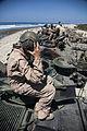 Canadians, Marines training AAV's 130619-M-FJ247-098.jpg