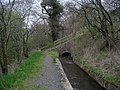 Canal Feeder above River Almond - geograph.org.uk - 790639.jpg