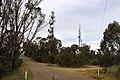 Captain Cook Drive - Wagga 1.jpg