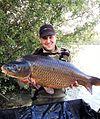 Carpe commune pêchée sur l'étang de la Livaridère.jpg