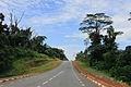 Carretera y Selva (8078050262).jpg