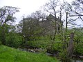 Castle hidden in the Trees - geograph.org.uk - 828680.jpg