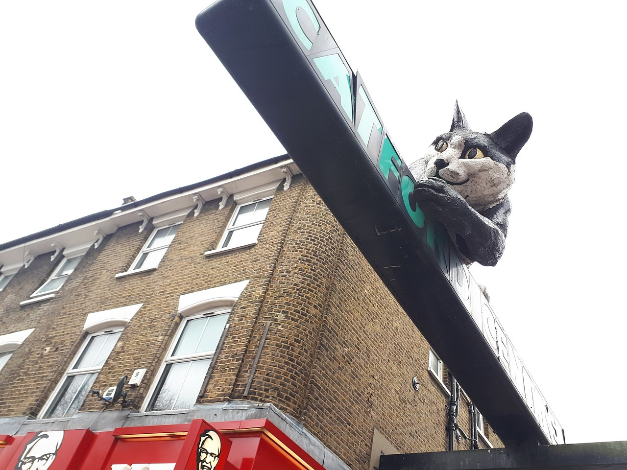 This thread is for thought-unprovoking pictures - Page 3 1280px-Catford_Cat