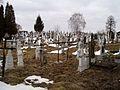 Cemetery, Zapytiv (01).jpg