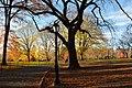 Central Park - panoramio (16).jpg
