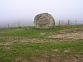 Chalk Stone, South Downs Way - geograph.org.uk - 341522.jpg