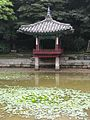 Changdeokgung Palace, June 2009 (3689174010).jpg