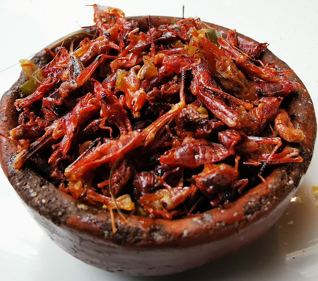 FILE NAME: Chapulines in Oaxaca.jpg  CAPTIONS IN DIFFERENT LANGUAGES: EN: DE: SV: Chapulines in Oaxaca - fotokredit till NUMBER7isBEST FI:   LINK IN CAPTION / LINK TO SOURCE: https://en.wikipedia.org/wiki/Chapulines#/media/File:Chapulines_in_Oaxaca.jpg  IMAGE ADDRESS: https://upload.wikimedia.org/wikipedia/commons/thumb/b/bc/Chapulines_in_Oaxaca.jpg/1024px-Chapulines_in_Oaxaca.jpg  DOWNLOAD PLATFORM: https://en.wikipedia.org  TITLE: A bowl of chapulines in Oaxaca City  KEYWORDS:  AUTHOR: Nanahuatl - https://commons.wikimedia.org/wiki/User:Nanahuatl  LINK TO AUTHOR'S PAGE: https://commons.wikimedia.org/wiki/User:Nanahuatl  COMMENTS:  COPYRIGHT: Nanahuatl - CC BY-SA 4.0  THIS INFORMATION WAS COLLECTED: 2.4.2021