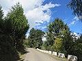 Chelela to Paro road views during LGFC - Bhutan 2019 (118).jpg